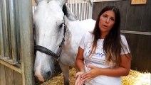 Carole Richter et les chevaux, une histoire de passion et de bien-être