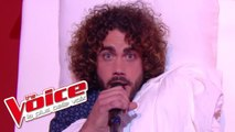 Wake Me Up, Before You Go-Go - Wham! | Marius | The Voice France 2017 | Live