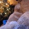 Ce chiot golden retriever ne dort que dans les bras de son ours en peluche. Trop adorable !