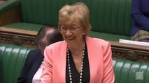 Andrea Leadsom confirms UK Parliament will take easter break