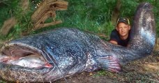 Un pêcheur a sorti un véritable monstre de leau  un silure de 2,58 mètres