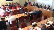 Commission du développement durable et Commission des affaires étrangères : Plateforme intergouvernementale sur la biodiversité - Mardi 16 juillet 2019