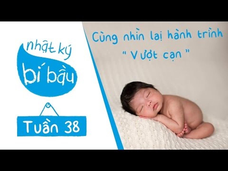 Nhỏ To Cùng Mẹ | Nhật Ký Bí Bầu | Tuần 38 - Cùng Nhau Nhìn Lại Hành Trình