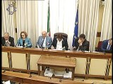 Roma - Audizione Ufficio parlamentare di Bilancio e Corte dei conti (17.07.19)