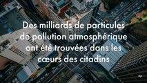 Des milliards de particules de pollution atmosphérique ont été trouvées dans les cœurs des citadins