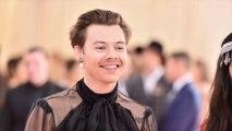 Harry Styles sera peut-être un prince Disney