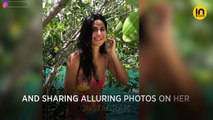 Katrina Kaif puts up a pretty picture but Arjun Kapoor's comment is stealing the show