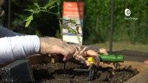 Reportage - Du jardinage pour la rééducation