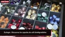 Écologie : Découvrez les capsules de café biodégradables (vidéo)