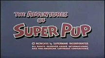 The Adventures of Superpup - intro