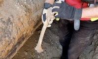 Des ossements humains découverts sur un chantier