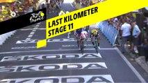 Last kilometer / Flamme rouge - Étape 11 / Stage 11 - Tour de France 2019