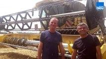 À bord d'une moissonneuse-batteuse avec des agriculteurs berrichons