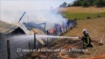 31 bovins tués dans l'incendie d'un bâtiment agricole