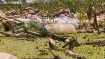 Limpieza, reciclaje y ecoturismo en el lago Tisza, en Hungría