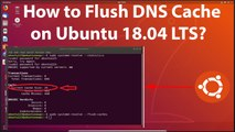 How to Flush DNS Cache on Ubuntu 18.04 LTS?