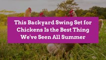 This Backyard Swing Set for Chickens Is the Best Thing We've Seen All Summer