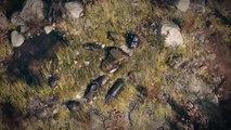 Fallout 76  Official E3 Trailer