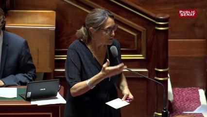 """Projet de loi Energie climat:  Sophie Primas évoque """"les points durs"""" de la CMP"""
