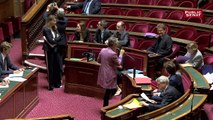 Loi Énergie et Climat: le Sénat adopte sa version du texte