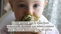 Avertissement de l'OMS : la nourriture pour bébé est beaucoup trop sucrée