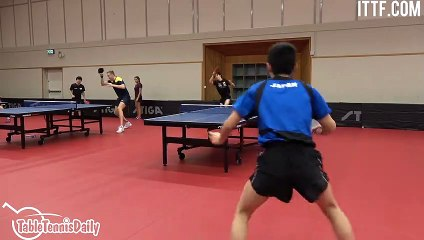 卓球   Harimoto Tomokazu - Relentless Topspin Training