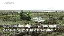 Algues vertes: les autorités du Finistère veulent rassurer