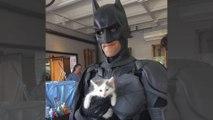 Batman existe vraiment et il sauve les animaux!