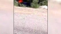 Muğla'da devrilen kamyonetteki yangın ormana sıçradı