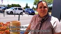 Valence : l'arboricultrice touchée par la grêle vend ses fruits en direct de Décathlon