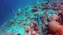 Voyager aux Maldives