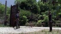 The Walking Dead - saison 10 : bande-annonce officielle