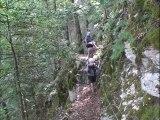 Sentier découverte Pied Frais -La Rivière 38210 Vercors