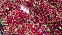 Denizli'de domates, patates ve soğan fiyatı ile yüz güldürmeye devam ediyor
