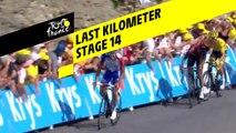 Last kilometer / Flamme rouge - Étape 14 / Stage 14 - Tour de France 2019