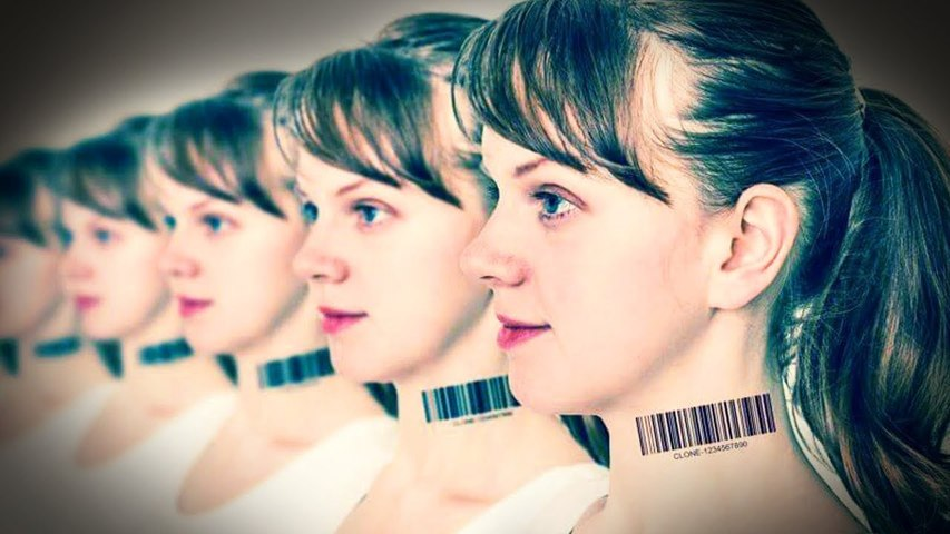 Human Cloning | The Mystery Files
