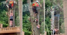Elle aide un bûcheron à décoincer une tronçonneuse bloquée dans l'arbre, la situation tourne au drame