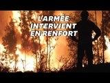 Au Portugal, les terribles images du centre du pays, à nouveau ravagé par les flammes