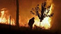 اكثر من ألف إطفائي يكافحون حرائق بوسط البرتغال