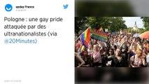 Pologne : Une gay pride attaquée par des ultranationalistes dans l'est du pays