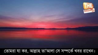 সূরা হাশরের শেষ সাত আয়াত║আবেগময় তিলাওয়াত বাংলা অনুবাদ সহ║ Voice of Islam BD ||