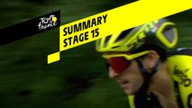 Summary - Stage 15 - Tour de France 2019