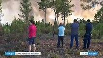 Incendies au Portugal : 1 300 pompiers mobilisés