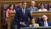 Sánchez ofereix a Casado un pacte per a ser investit i governar sense Podem i els independentistes