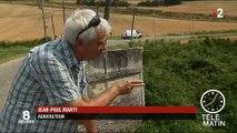 Sécheresse : les agriculteurs d'Occitanie fortement impactés