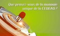 Microdrome : Que pensez-vous de la monnaie unique de la CEDEAO ?