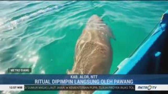 Festival Panggil Ikan Dugong di NTT