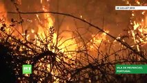 Les feux de forêts qui frappent depuis samedi le centre du Portugal, étaient «maîtrisés à 90%» ce matin, selon la Protection civile  - VIDEO