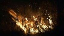 Les pompiers luttent contre les incendies de forêt au Portugal