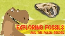 Exploring Fossil Records, How Fossils Are Formed, Interesting - Educational Videos for Kids